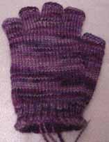 Purpleglove1